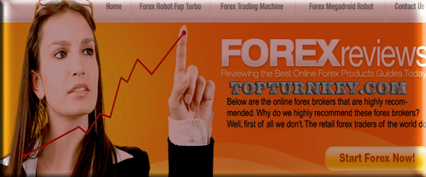 forex-trading-income